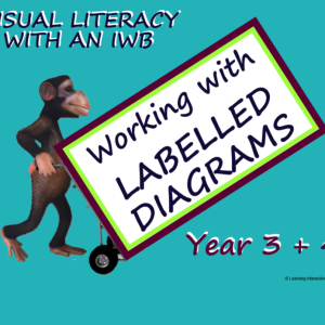 Labelled Diagrams Year 3+4_1